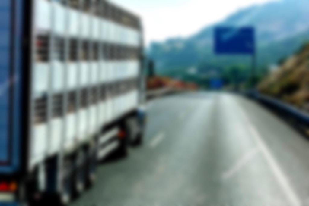 Vrachtwagen of transport